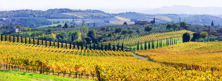 pictorai countryside with vineyards in autumn. Chianti region, Tuscany. Italy Stock Photo
