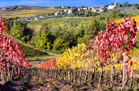 pictorial: pictorial countryside in Chianti with autumn wineyards. Italy