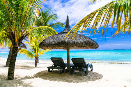 palm trees: relaxing tropical holidays. beach chairs under palm trees Stock Photo