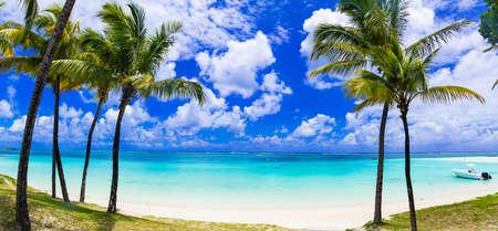 playas tropicales: perfectas playas de palmeras tropicales de la isla Mauricio