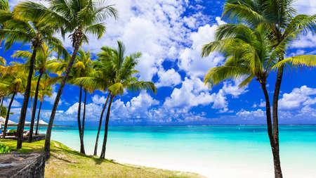 Parfaites plages de palmiers tropicales de l'île Maurice Banque d'images - 70203557
