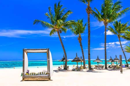 Beautiful beach of Mauritius island, azure sea and palm tree. Zdjęcie Seryjne