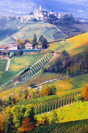 famous industries: Beautiful village Castiglione Falletto, View with vineyards and old castle, Piedmont, Italy.