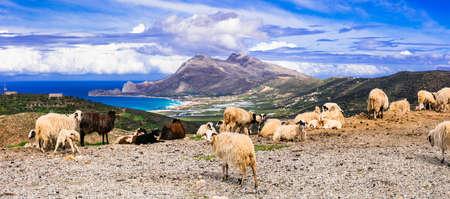Panoramic view of island Crete, Falasarna, Greece.