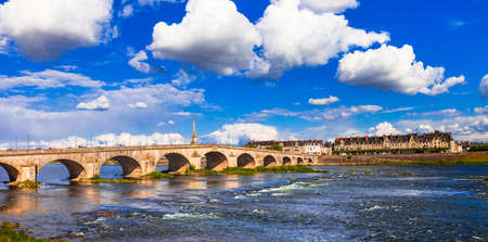 Impressive Blois old town, view with old bridge and traditional houses, France.