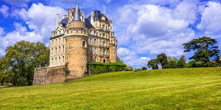 Beautiful Brissac Castle, Loire Valley, Panoramic view, France 免版税图像
