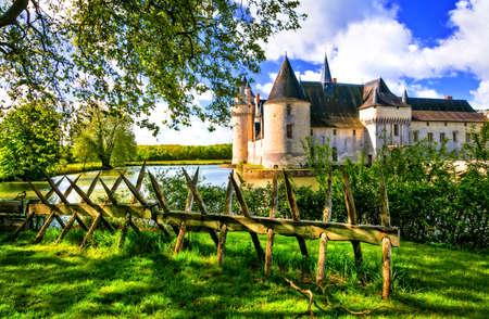 그림 Plessis Bourre 성, 루 아르 계곡, 프랑스. 스톡 콘텐츠