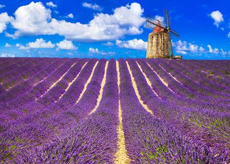 印象的な風景は、フランス、プロバンスのラベンダー フィールドに咲きます。