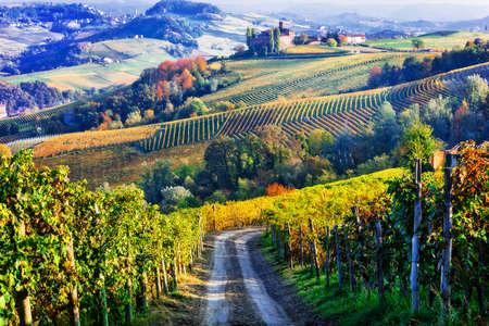 Autumnal landcsape in Piedmont region, multicolored vineyards, Italy.