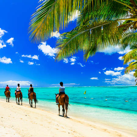 Panoramic view of beautiful beach, azure sea palm tree and horses, Mauritius island. 免版税图像