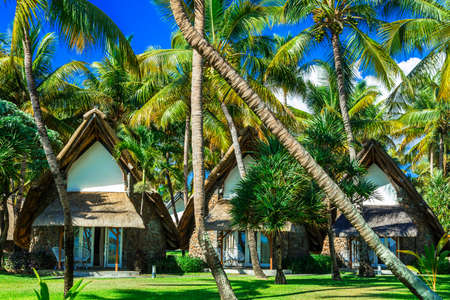 Tropical hoplidays in Mauritius island, view with bungalows and palm tree. Stock Photo