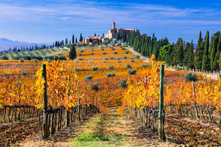 Banfi castle, panoramic view with colored vineyards and cypresses, near Montalcino, Tuscany, italy