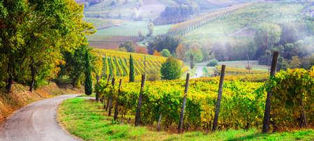 Impressie vigneti della regione Piemonte, vista panoramica, Italia.