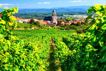 フランスとブドウ畑、美しいアルザス地方カイゼルスベルグ村を見る
