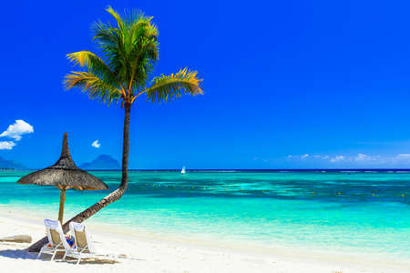 Beautiful beach of Mauritius island, view from the azure sea and palm tree.