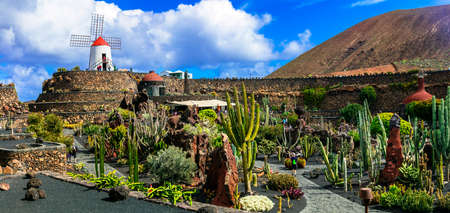 Beautiful Cactus Garden, Lanzarote island, Canary, Spain.