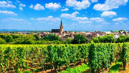 Beeindruckendes traditionelles Dorf, Elsass-Region, Ansicht mit Weinbergen, Frankreich.