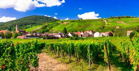 Beeindruckendes altes Dorf, Ansicht mit Weinbergen, Elsass-Region, Frankreich.
