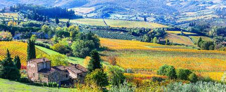 Impressive autumn landscape, Tuscany, Italy