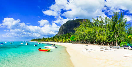 Tropical paradise in Mauritius island, view with turquoise sea, white sand and palm trees.