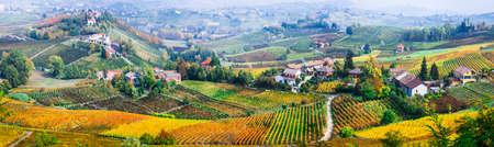 Impressive multicolored vineyards in Piedmont region, Italy