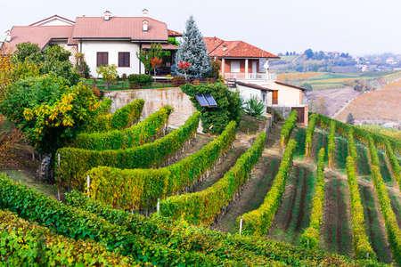 Colorful vineyards and little village in Piedmont region, Italy Banco de Imagens