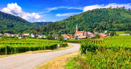 Casas tradicionales y viñedos en Kaysersberg village, Alsacia, Francia