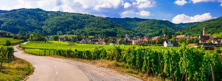 Beeindruckende Weinberge und kleines Dorf in der Region Elsass, Frankreich Standard-Bild