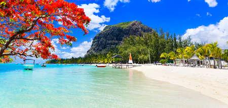 Best tropical destination - paradise island Mauritius and best beach Le Morne