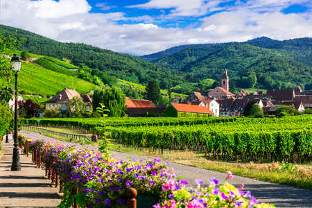 Beautiful countryside of Alsace region Stock fotó