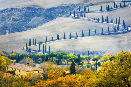 Beautiful Tuscany countryside- winding road with cypresses. Italy