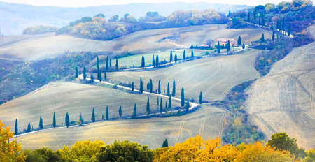 Beautiful Tuscany autumn countryside- winding road with cypresses. Italy