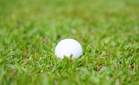 caddie: Golf crystal ball on green grass in golf course