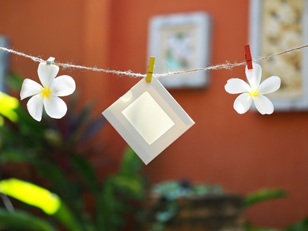 Photo Frames on Rope with flower. background the nature, soft focus
