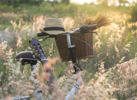wildflowers: Bicycle with basket and guita of flowers in meadow, select and soft focus