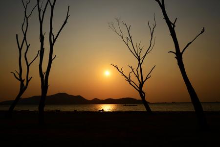 Silueta de árbol con sol y cielo amarillo anaranjado rojo, Tailandia Foto de archivo