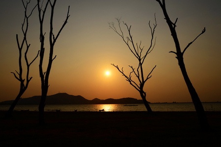 Tree silhouette with sun and red orange yellow sky,Thailand Stock Photo