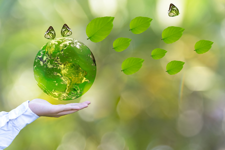 Green world with butterfly and leaves in man hand, green background, Earth image provided by Nasa.