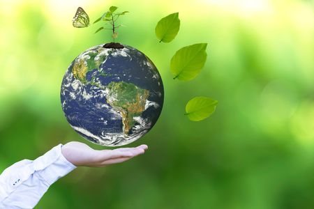 Sosteniendo un globo de tierra brillante en sus manos con mariposa. Entorno mundial y ambiente de ahorro. Imagen de la Tierra proporcionada por la NASA.