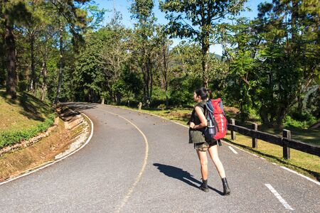 carrying: Beautiful woman hiker standing on forest trail and looking away. Female with backpack on hike in nature.  Travel Concept