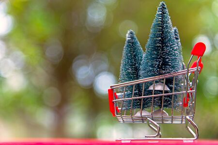 Shopping Christmas and New year , christmas tree in the shopping cart.  Holiday Concept