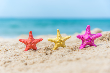 Colourful Starfish on the beach background blue sky.  Summer Concept