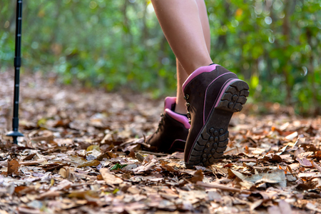 Close-up of female hiker feet and shoe walking on forest trail.  Travel Concept