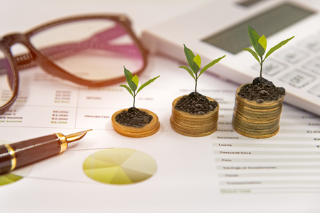 Growth plants on stack of coins on paper analyze financial graph with calculate for investment business. Investment and Saving Concept Stock Photo