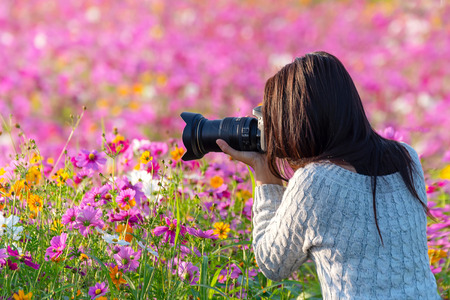 Professional woman photographer taking camera outdoor portraits with prime lens in the photography flower cosmos meadow nature. Travel and Lifestyle Concept Stockfoto