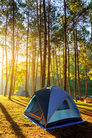 Adventures Camping and tent under the pine forest near water outdoor in morning and sunset at Pang-ung, pine forest park , Mae Hong Son, North of Thailand, forest background. Stockfoto