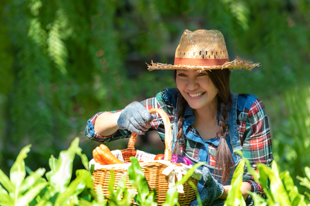 Asian smilling happy women farmer holding a basket of vegetables organic in the vineyard outdoors countryside for sell in the markets Banco de Imagens - 120819362