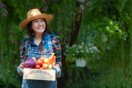 Asian smiling happy women farmer holding a basket of vegetables organic in the vineyard outdoors countryside for sell in the markets Reklamní fotografie