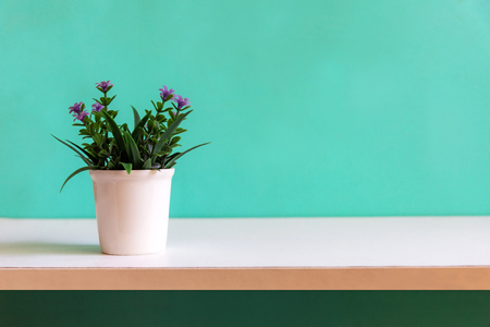 Green wall with flower on shelf white wood, copy space for text. Still life and Lifestyle Concept