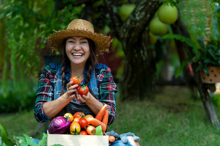 Asian happy women farmer holding a basket of vegetables organic in the vineyard outdoors countryside for sell in the markets Banco de Imagens